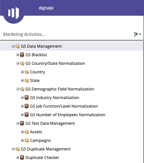 Example Gold Standard best practice data management operational program structure for Marketo Engage
